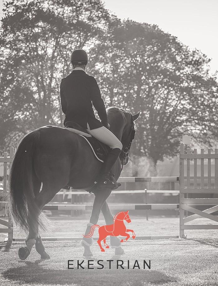 Ekestrian - Marketplace de chevaux de sport