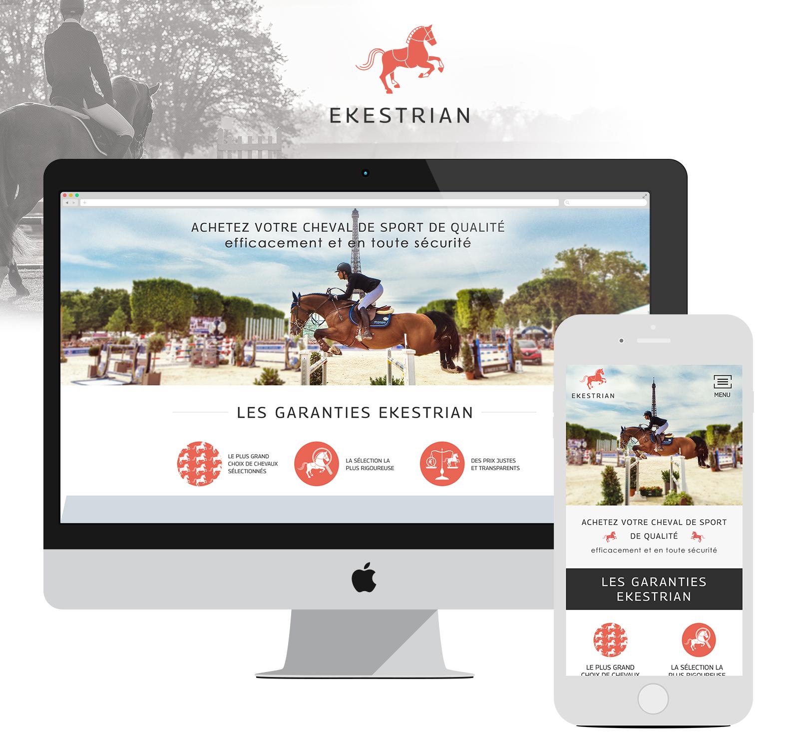 Ekestrian - Achats de chevaux de sport